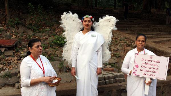Angels_walk_Sanjay_National_Park_2017-1