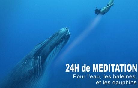 OceanMeditation2016